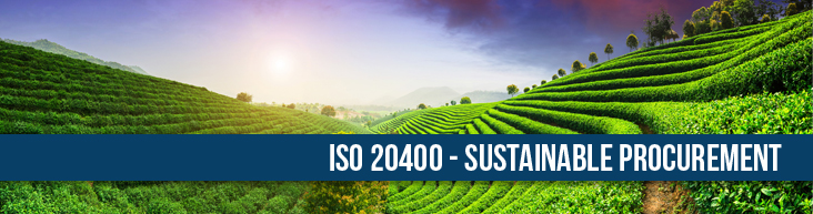 ISO 20400 Sustainable Procurement